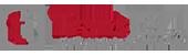 logo-transtel